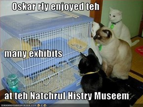Oskar rly enjoyed teh   many exhibits   at teh Natchrul Histry Museem
