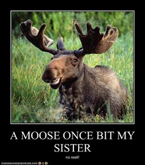 A MOOSE ONCE BIT MY SISTER