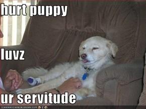 hurt puppy luvz ur servitude