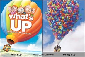 What's Up Totally Looks Like Disney's Up