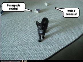 He suspects nothing!