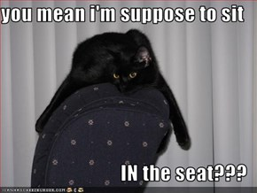 you mean i'm suppose to sit  IN the seat???