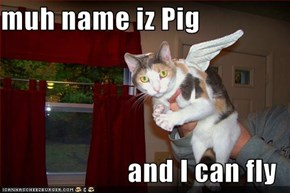 muh name iz Pig  and I can fly