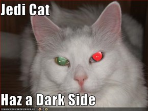 Jedi Cat  Haz a Dark Side