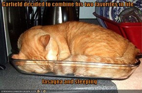 Garfield decided to combine his two favorites in life:  lasagna and sleeping