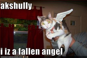 akshully  i iz a fallen angel