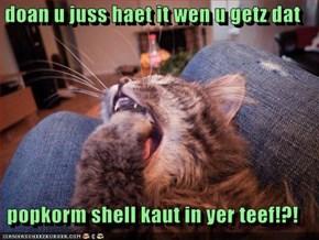 doan u juss haet it wen u getz dat   popkorm shell kaut in yer teef!?!