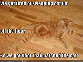 We got tired of sweeping cat fur  off the floor So we got floor that matched the cat