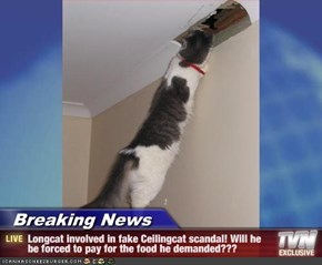 Breaking News - Longcat involved in fake Ceilingcat scandal! Will he be forced to pay for the food he demanded???