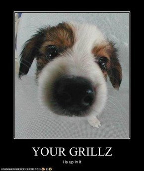 YOUR GRILLZ