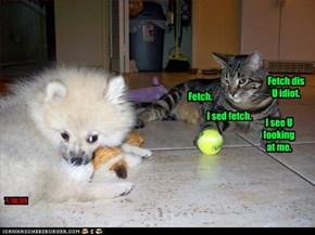 Fetch.