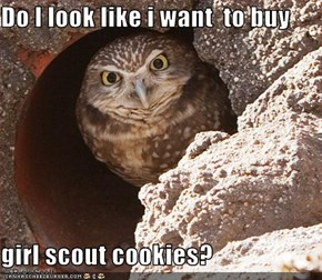 Do I look like i want  to buy   girl scout cookies?