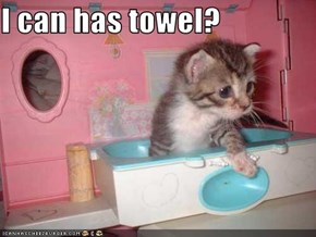 I can has towel?