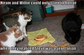 Hiram and Willie could only stare in horror   when they realized Steve was a vegetarian.