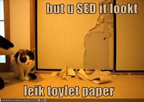 but u SED it lookt  leik toylet paper