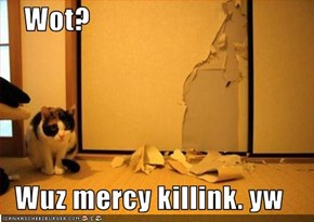 Wot?  Wuz mercy killink. yw