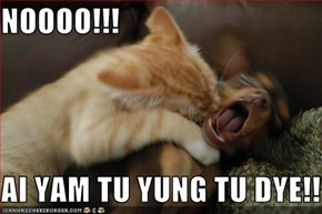 NOOOO!!!  AI YAM TU YUNG TU DYE!!!