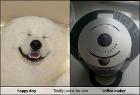 happy dog Totally Looks Like coffee maker
