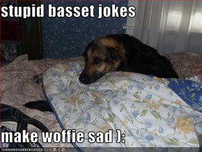 stupid basset jokes   make woffie sad ):