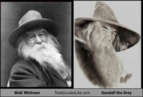 Walt Whitman Totally Looks Like Gandalf the Grey