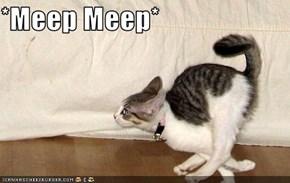 *Meep Meep*
