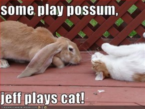 some play possum,  jeff plays cat!