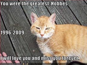 You were the greatest, Hobbes. 1996-2009 I will love you and miss you forever.