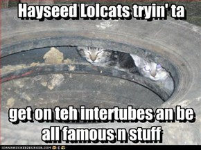 Hayseed Lolcats tryin' ta     get on teh intertubes an be all famous n stuff