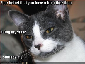 Your belief that you have a life other than being my slave... ...amuses me.