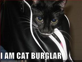 I AM CAT BURGLAR