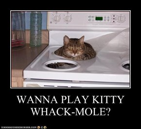 WANNA PLAY KITTY WHACK-MOLE?