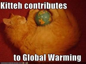 Kitteh contributes  to Global Warming