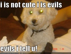 i is not cute i is evils  evils i tell u!