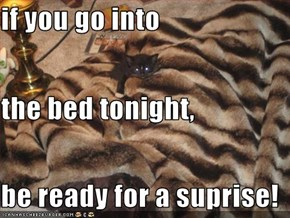 if you go into the bed tonight, be ready for a suprise!