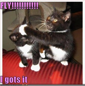 FLY!!!!!!!!!!!  I gots it