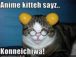Anime kitteh sayz..  Konneichiwa!