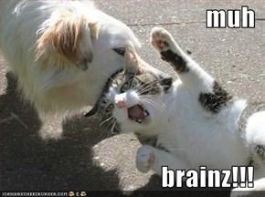 muh  brainz!!!