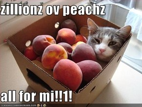 zillionz ov peachz   all for mi!!1!