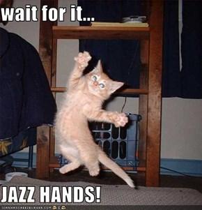 wait for it...  JAZZ HANDS!