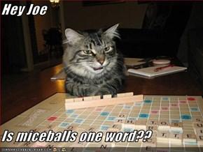 Hey Joe  Is miceballs one word??