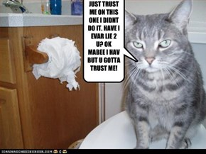 JUST TRUST ME ON THIS ONE I DIDNT DO IT. HAVE I EVAR LIE 2 U? OK MABEE I HAV BUT U GOTTA TRUST ME!