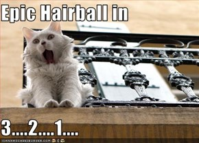 Epic Hairball in   3....2....1....