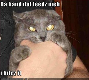 Da hand dat feedz meh  i bitez it