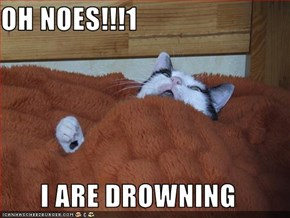 OH NOES!!!1  I ARE DROWNING