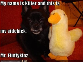 My name is Killer and this is  my sidekick, Mr. Fluffykinz