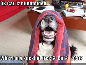 OK Cat, Iz blindfolded  Where my speshul treet?  Cat?  ...Cat?