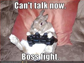 Can't talk now.  Boss fight.
