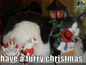 have a furry christmas
