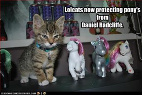 Lolcats now protecting pony's from  Daniel Radcliffe.