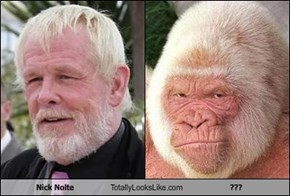 Nick Nolte Totally Looks Like ???